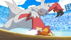 Blackbelt Zangoose 1.jpg